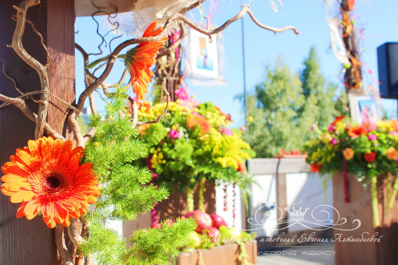 oranzevaya-svadba