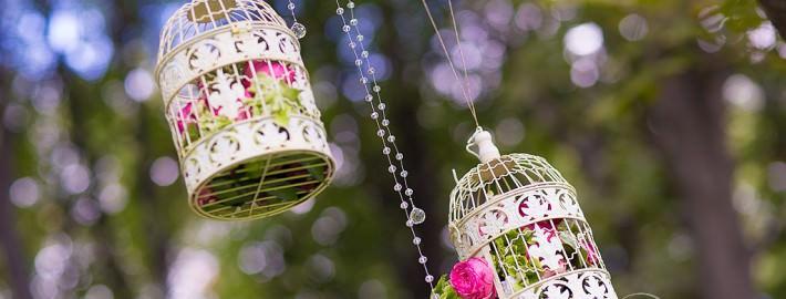kletki-v-svadebnom-dekore