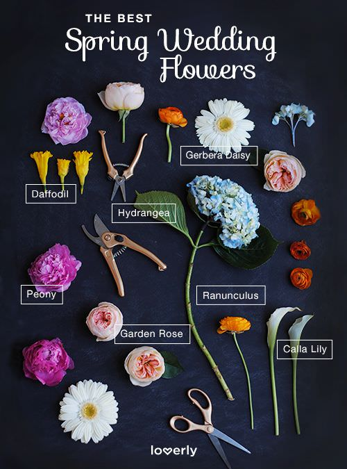 Цветы для весенней свадьбы