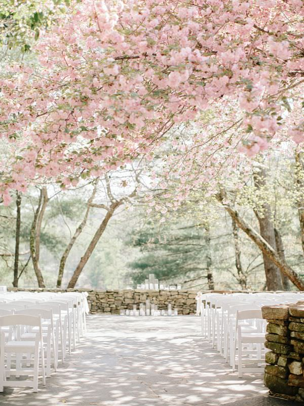Организация свадьбы весной