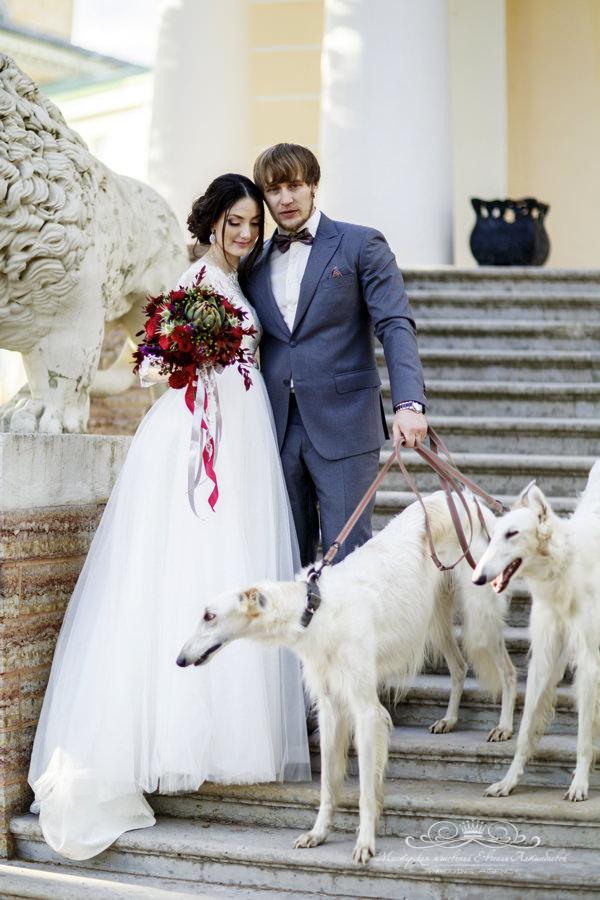Фотосессия с гончими на свадьбе в усадьбе Марьино