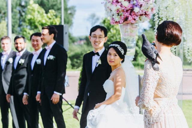 Пернатый гость на свадьбе
