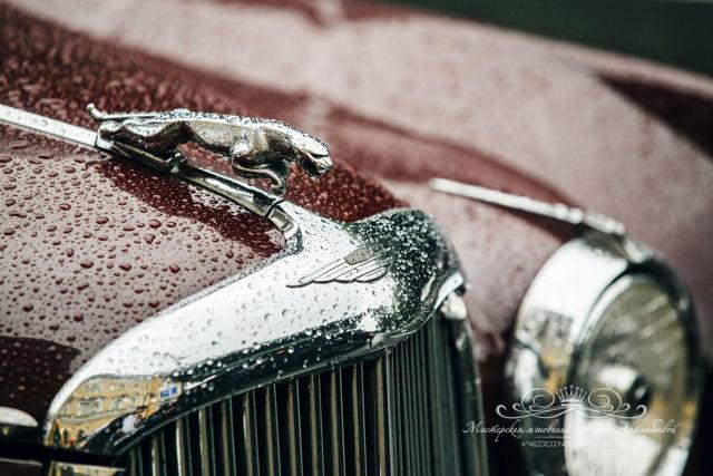 Аренда роскошного ретро автомобиля в Спб