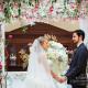 svadebniy-dekor-dolce&gabbana